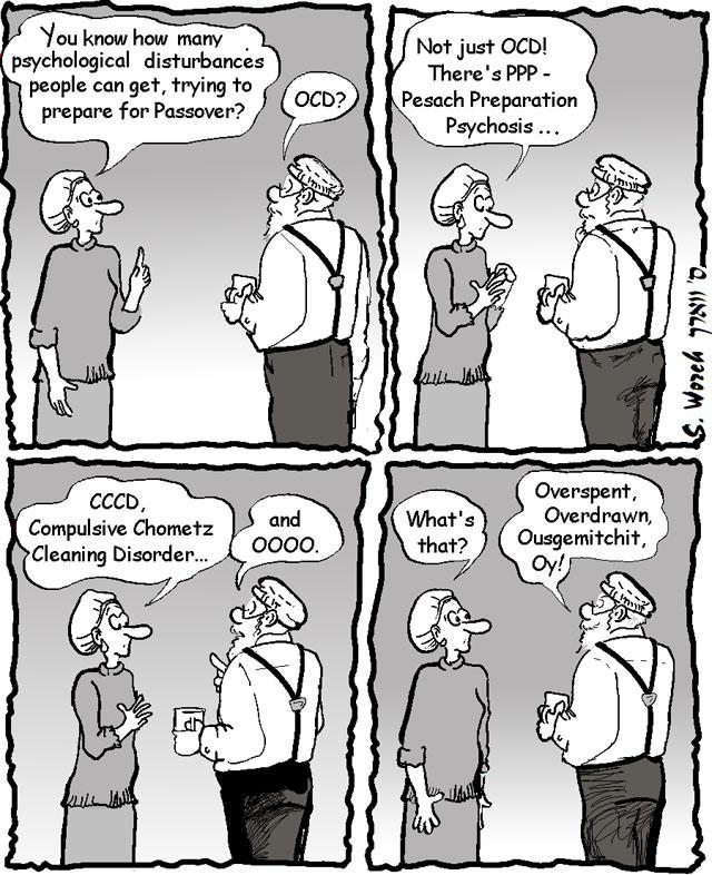 Pesach 06 - diagnostic manual