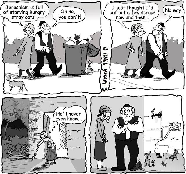05-22-2012 cats