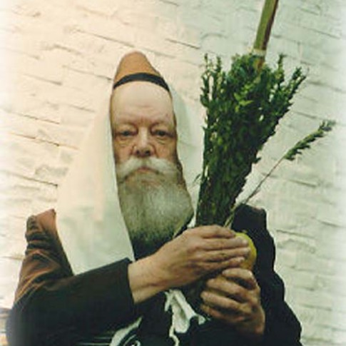 Now, This Is a Lulav