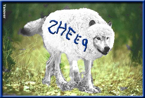 wolf-in-sheeps-clothing1