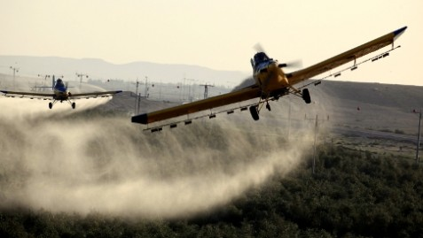 Airplanes sprayed pesticides at the fields in Ramat Hanegev Monday March 11 2013. as a new swarm of locusts hit the Ramat Hanegev region. Israel has experienced several minor locust infestations in recent days as small groups break off from an enormous swarm in the Giza region of Egypt.