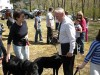 Reform Rabbi Fred Schwalb blessing dogs.