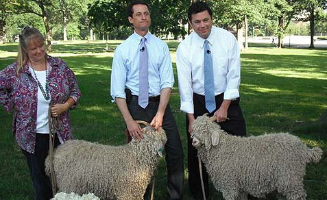 Mayoral Candidate Anthony Weiner: Sheep? Wolf? Both? Who knows -- but he looks like a winner.