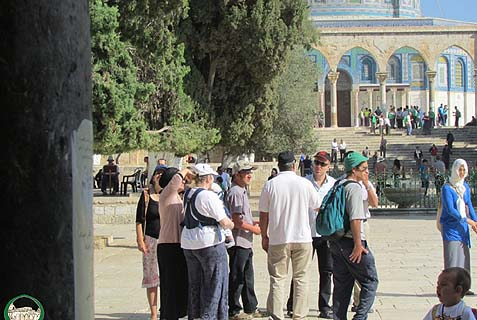 These are the Israeli rightists broke into al-Aqsa Mosque compound. They look crazed with right-wing rage...