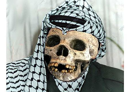 If Israel poisoned Arafat with polonium, as the Palestinian Authority wants people to believe, it would have to use enough to kill a herd of elephants.