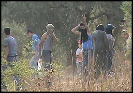 Arab olive pickers routinely attack Jews with rocks on Shabbat, photograph retaliation and then claim they were innocent victims.
