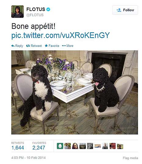 FLOTUS dog tweet