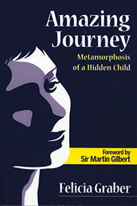 book-amazing-journey