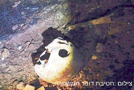 ancient skull discovered Gush Etzion