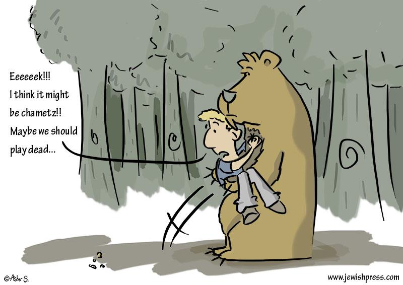 chametz bear