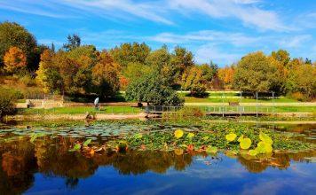 Rejuvenation: Nurturing Jerusalem's Botanical Gardens