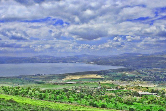 Rejuvenation: An Agricultural Revolution