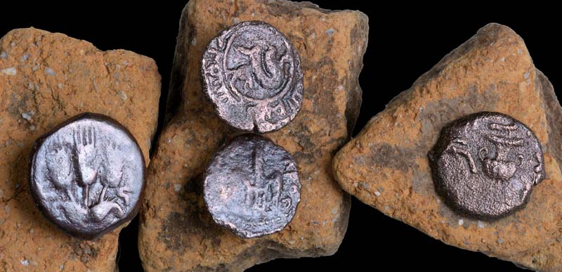 Ancient coins that were discovered in the excavation. / Photo credit: Clara Amit, courtesy of the Israel Antiquities Authority.