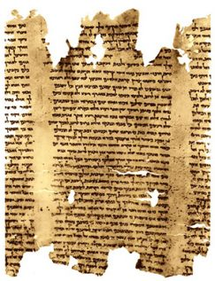 A portion of the second discovered copy of the Isaiah scroll, 1QIsab.