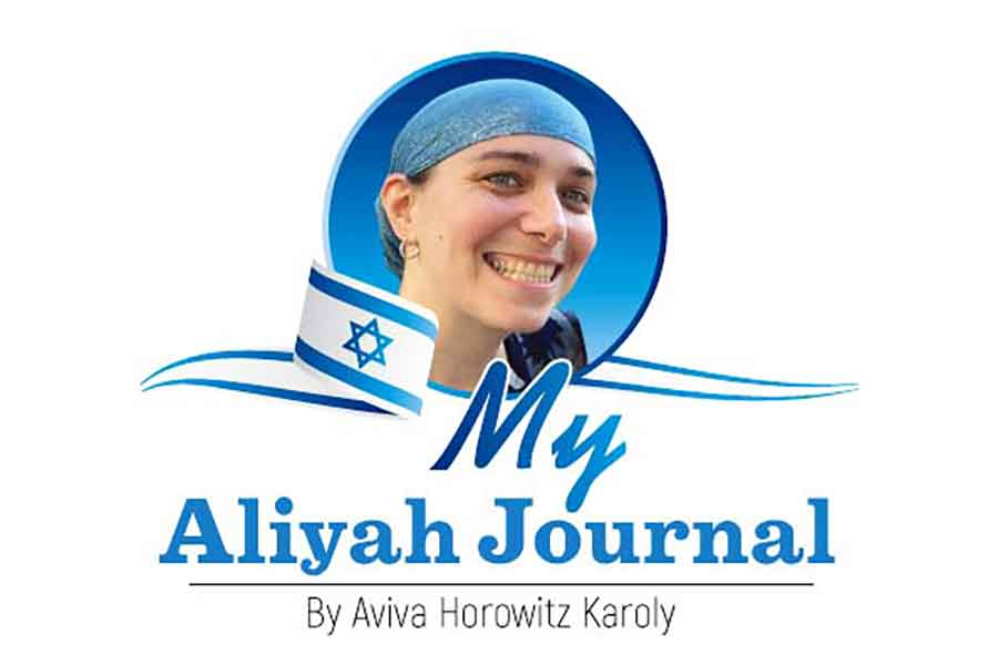 Buying A Car In Israel | The Jewish Press – JewishPress.com | Aviva Horowitz Karoly | 9 Av 5780 – July 30, 2020