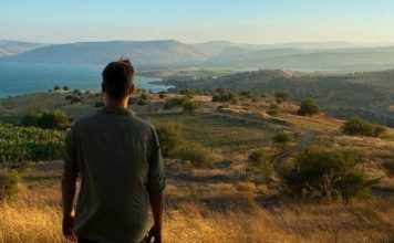 Israel Inspired: The Journey to Loving the Land