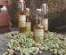 Olive Oil Gift