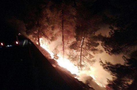 Fire in Gush Etzion.