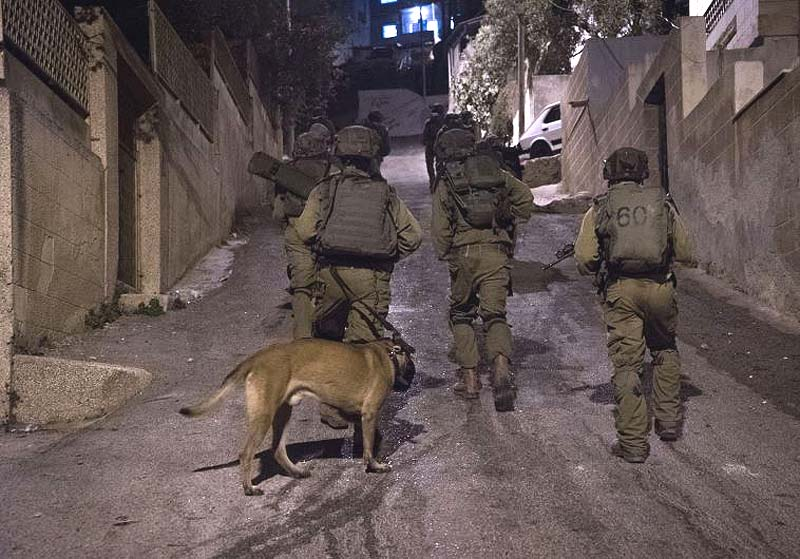 Two Palestinians injured, arrested by Israeli forces in Bethlehem