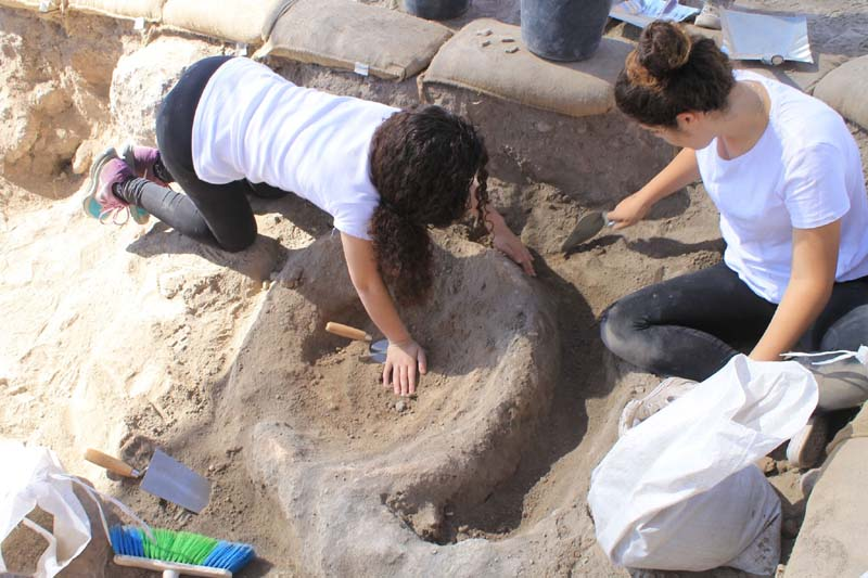 Image from the archaeological excavation at Givat Tittora, in Modiʻin-Maccabim-Reʻut / Photo credit: Courtesy Israel Antiquities Authority