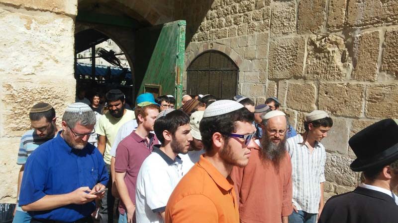 Jews visiting the Temple Mount on the 9 B'Av week / Photo credit: Courtesy Temple Organizations Headquarters