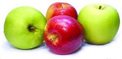 Shaul 091517 Apples