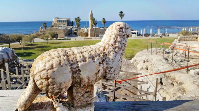 Statue of a ram that was discovered next to the vaults at the front of the temple platform. Photographic credit: Caesarea Development Corporation.