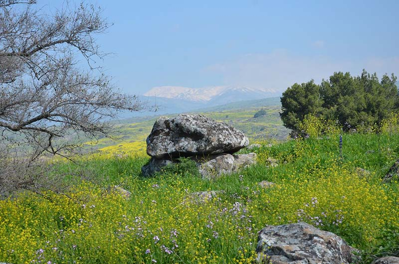 The 4,000 year old dolmen. / Photo credit: Gonen Sharon, Tel Hai College.