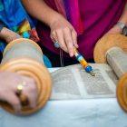 WOW Torah