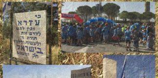 Rejuvenation: The Present of Jerusalem Day