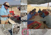 Rejuvenation: 'Show and Tel' at Ancient Shilo