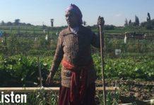 Rejuvenation: An Ethiopian Jewess's Epic-urean Journey